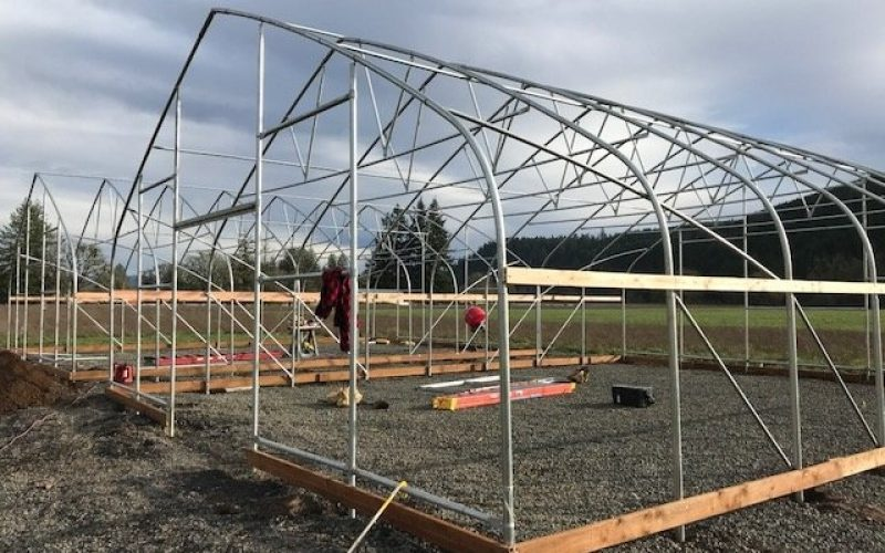 How to get Trusted greenhouse supplier for the outstanding material and quality